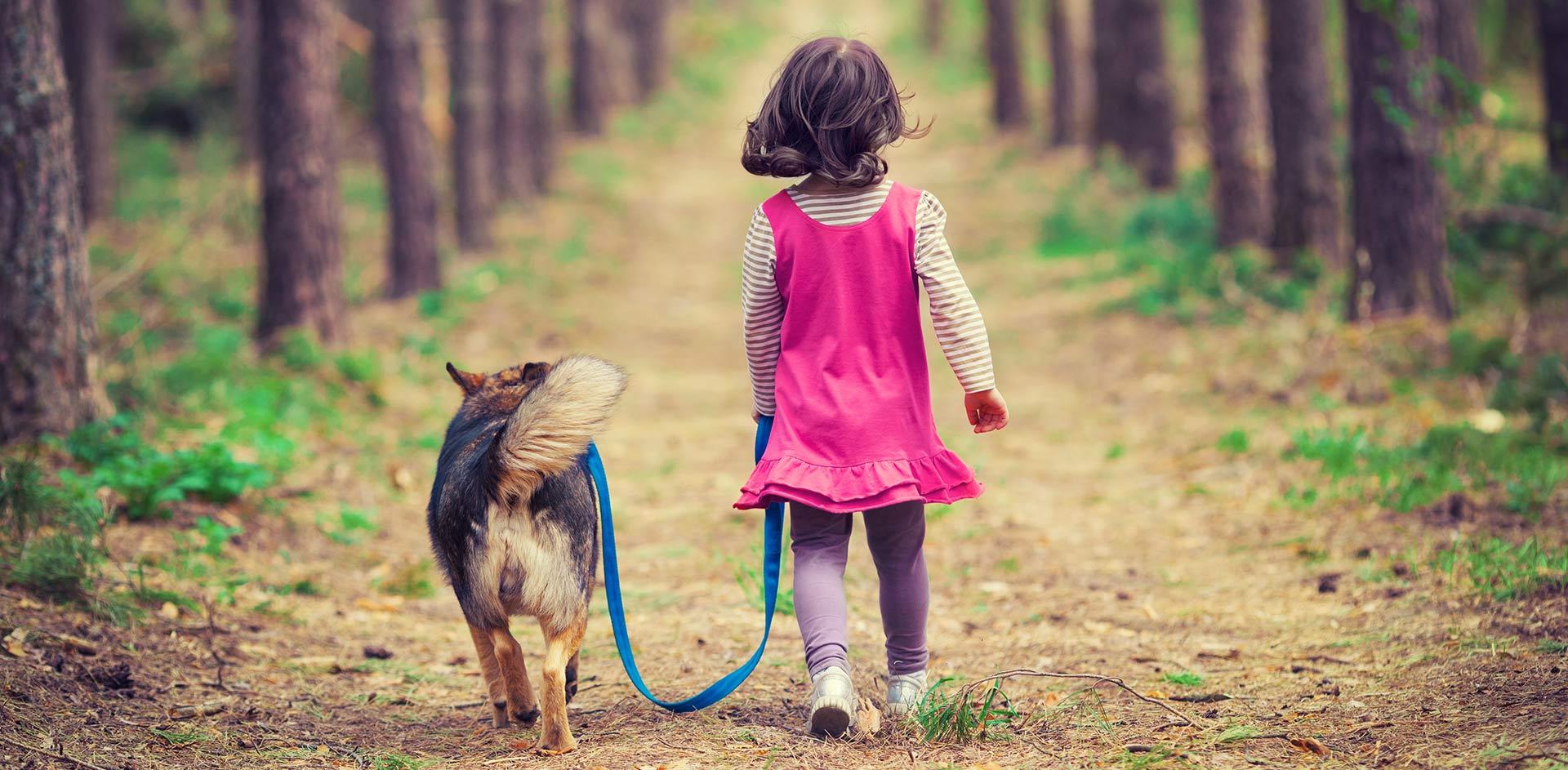 Do You Walk Your Dog In The Rain