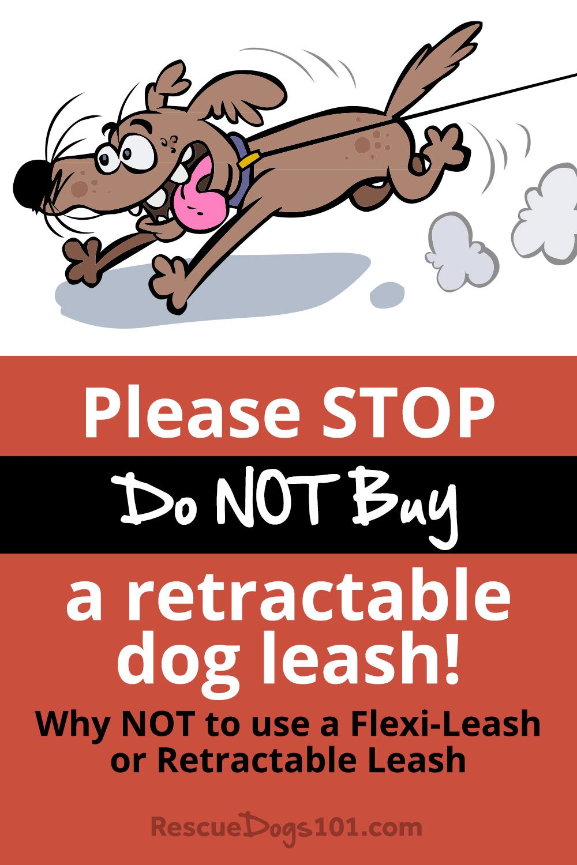 STOP, Do NOT Buy a retractable dog leash! >> Read why NOT to use a flexi-leash or retractable dog leash