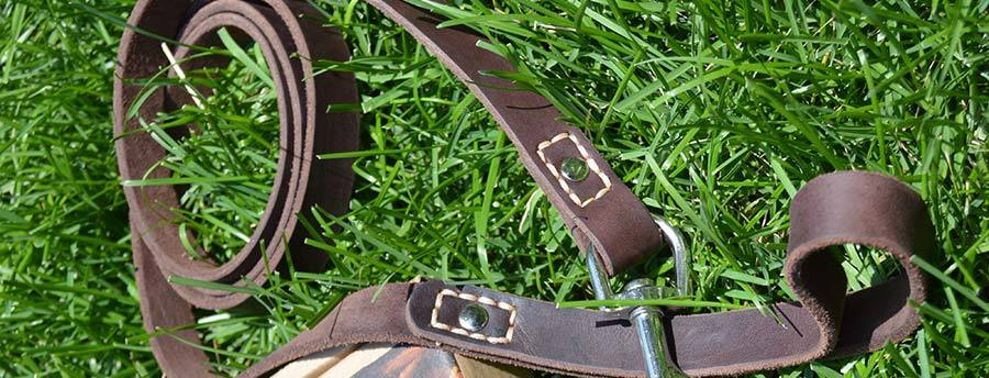 Best Leather leash for dogs