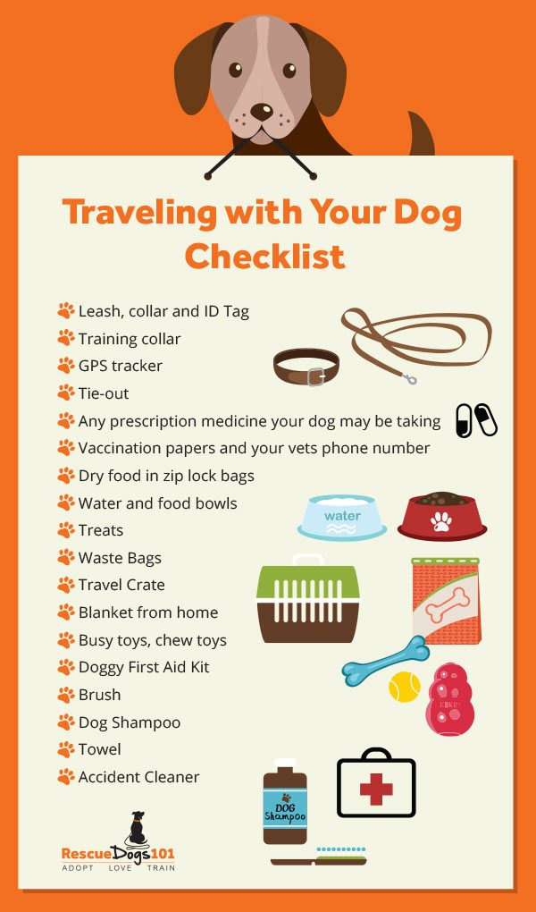 How to Travel with Your Dog Stress-Free