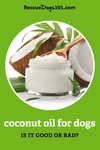 Is coconut oil safe for dogs?