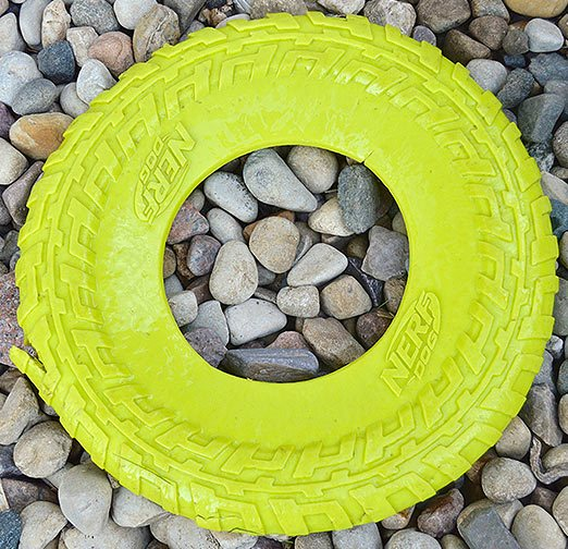 Product review nerf dog flyer frisbee