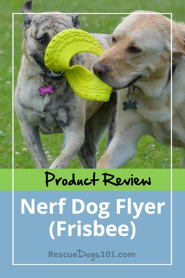 Product review nerf flyer frisbee