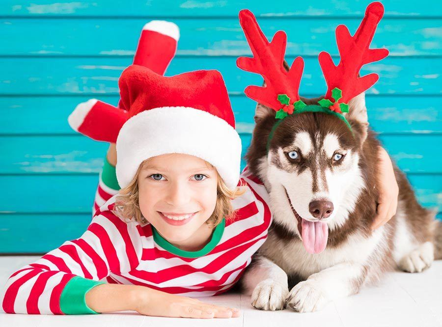 gift guide for kids that love dogs