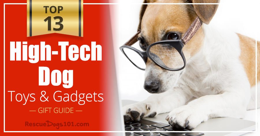 Top 13 High-Tech Dog Toys and Gadgets
