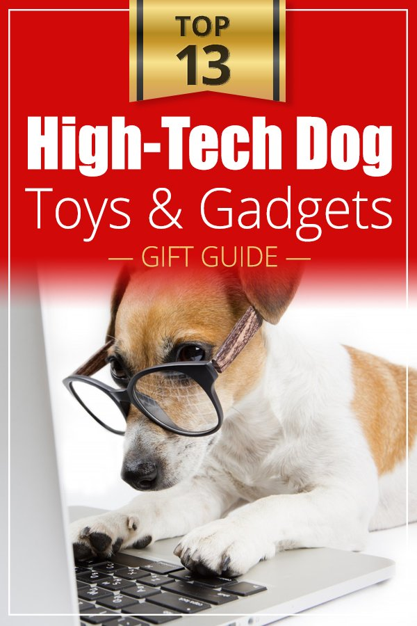 Top 13 High-Tech Dog Toys and Gadgets If you are a techy kind​ of person, you are going to love ​our list of ​​high-tech dog toys and gadgets. We all love our dogs, and probably spend a lot of money on buying them special dog toys, treats and... well gadgets! #doglover #giftguide #giftguidefordoglover #lovemydog