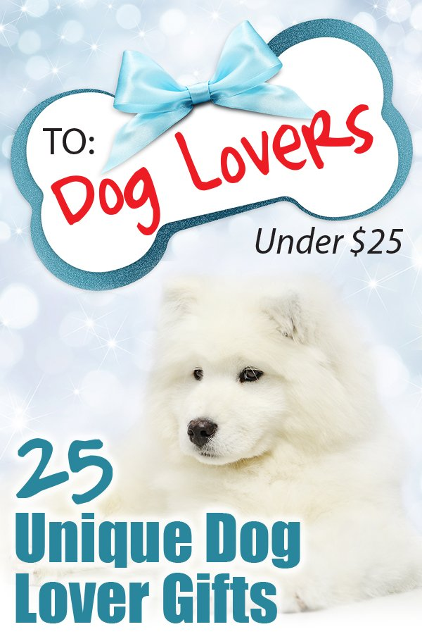 25 Unique Gifts Under $25 for Dog Lovers