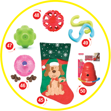 The super smart dog Christmas Stocking Stuffers for your Dog