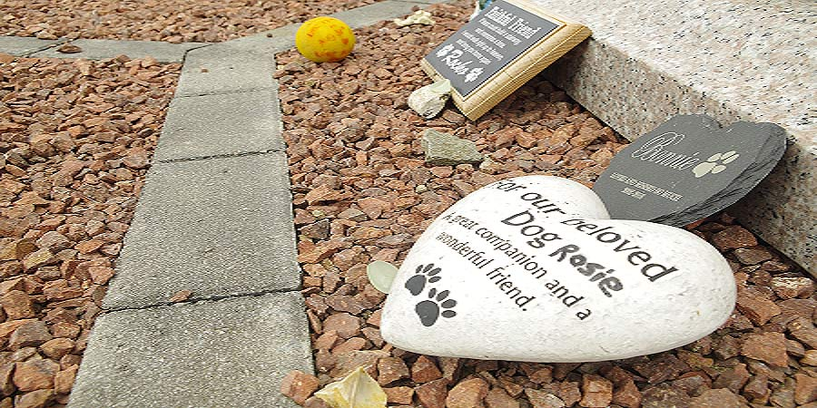 create a tribute or memorial to your pet