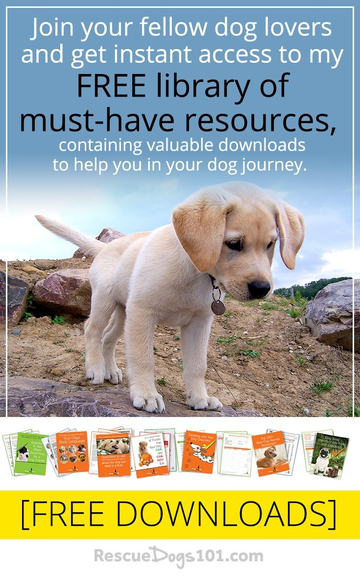 FREE Resources That Can 