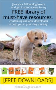 rescue dogs 101 free resources