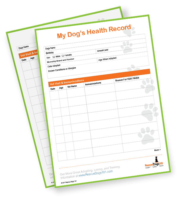 My Dogs Health Records