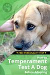 how to temperament test a dog before adopting
