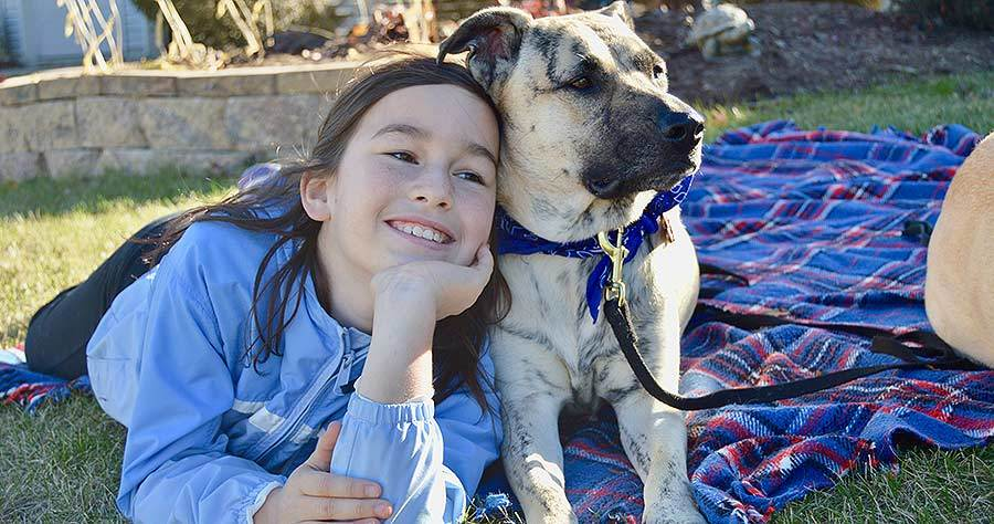 Top 17 Reasons You Should Adopt a Dog - Kids and Dogs