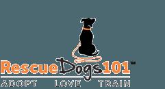 Rescue Dogs 101
