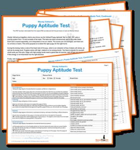 Download Puppy Aptitude Test