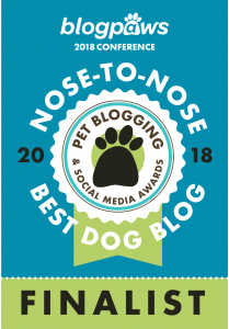 Rescue Dogs 101 Finalist for Best Dog Blog