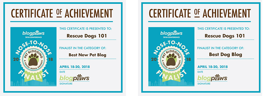 Rescue Dogs 101 Blog Paws Nose to Nose Finalist Certificate of Acheivement