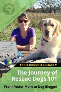 The Journey of Rescue Dogs 101 - From Foster Mom to Dog Blogger