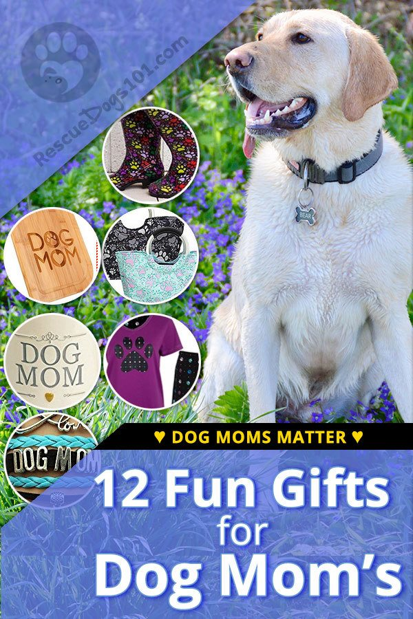 Dogs mom's deserve to be celebrated. Have fun with it for Mother's Day, a birthday or any day of the year! I researched and chose items I would love to receive from my family, so I hope you enjoy them as much as I do.  #doglover #giftguide #giftguidefordoglover #mothersday