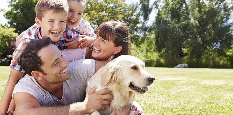 young family with a dog wanting to adopt