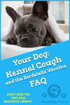 Kennel Cough FAQ and the Bordetella Vaccine