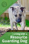 Living with a resource guarding Dog