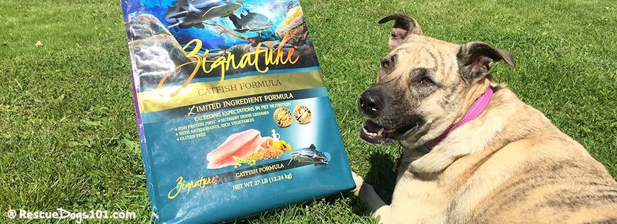 Zignature dog food dog with allergies