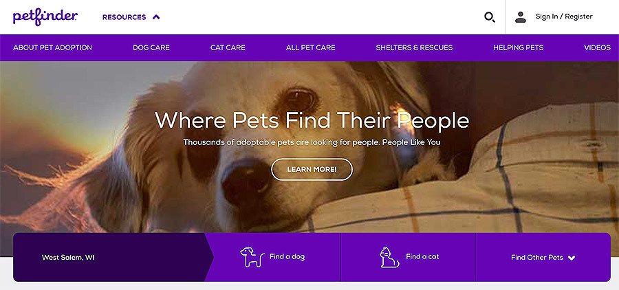 screen shot of dog adoption website petfinder