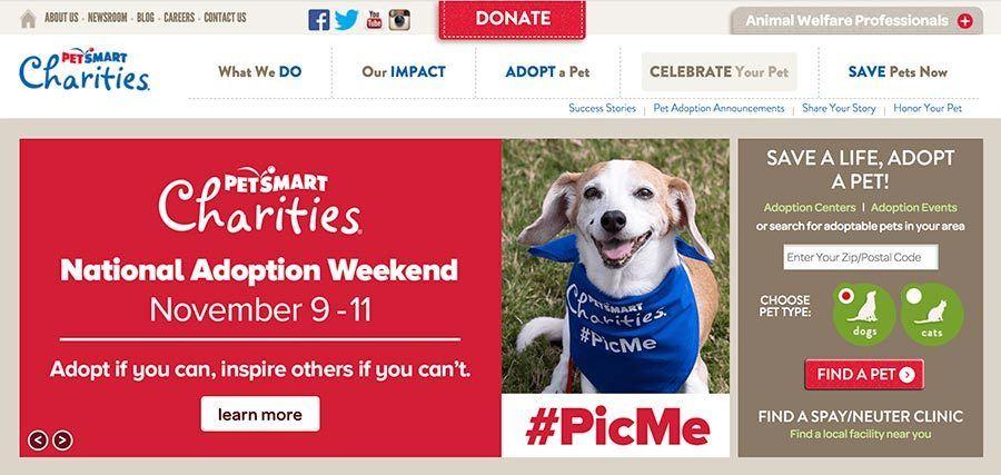 screen shot of dog adoption website petsmart