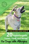 Top 20 Hypoallergenic Treats, Food, and Bones for Dogs with Allergies