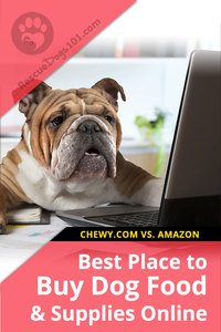 best place to buy dog food online