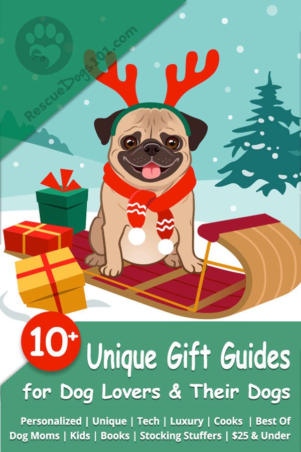 Dog ​Gift Guides for Dog Lovers and Their Dogs