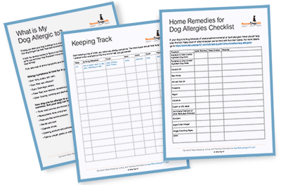 Rescue Dogs 101 Dog Allergy Detective Form and Checklist