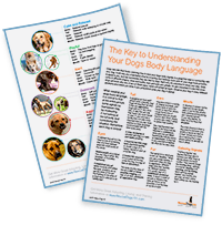 Dog Body Language Cheat Sheet