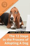 2 Steps in the Adopting a Dog Process