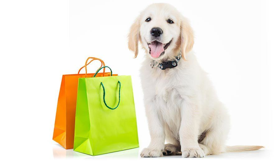 Puppy with gift bags Shopping List