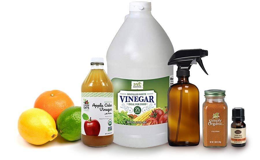 DIY Homemade Natural Bitter Apple Spray Ingredients