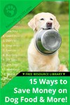 15 Easy Ways to Save Money on Your Dog