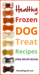 Homemade Frozen Dog Treat Recipe Booklet