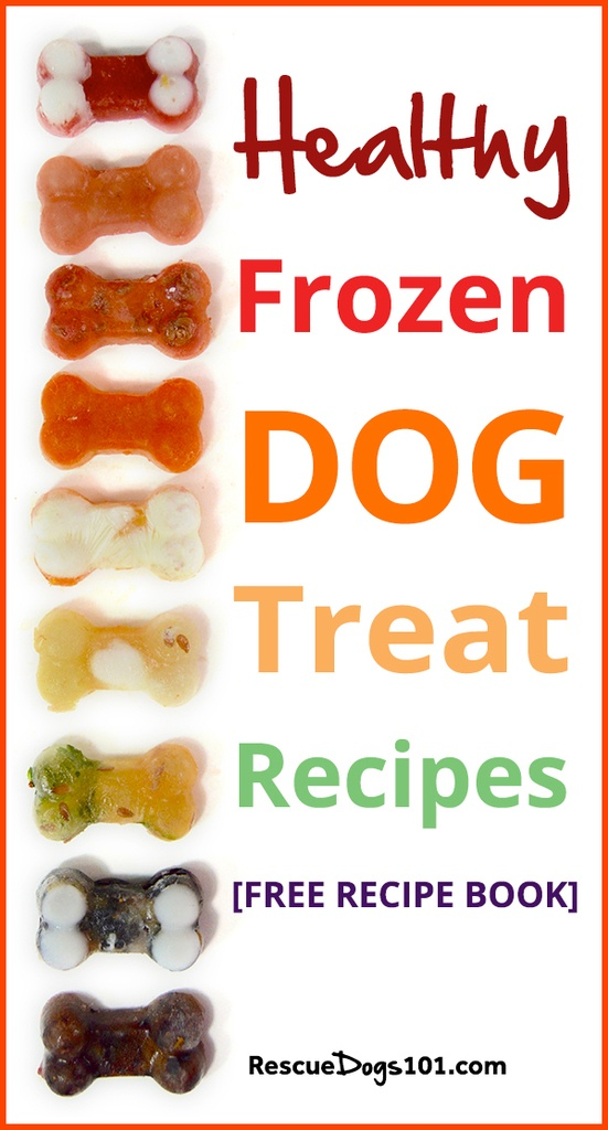 Homemade Frozen Dog Treat Recipe Booklet