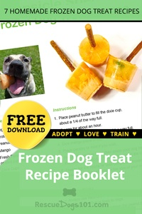 Frozen Dog Treat Recipe Booklet free download