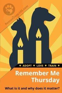 Remember Me Thursday Rescue Pets