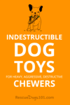 Indestructible Durable Dog Toys