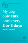 My dog only eats once every 2-3 days. Is this normal?