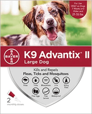Best OTC flea and tick preventative