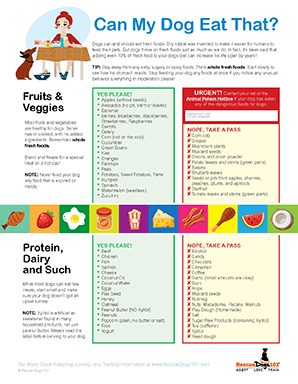 Can my dog eat that? cheat sheet