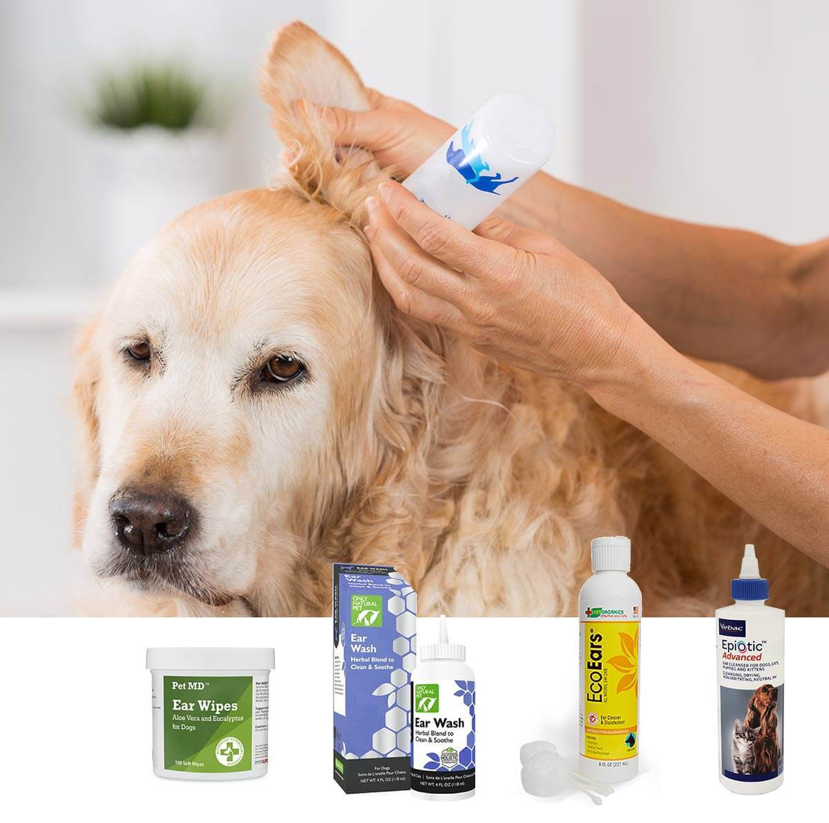 Best dog ear cleaner for keeping your dogs ears clean and healthy. Which to choose for regular maintenance vs ear infections.