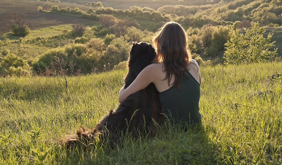 dog and woman sitting on hill looking at scenery