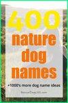 400 nature dog names
